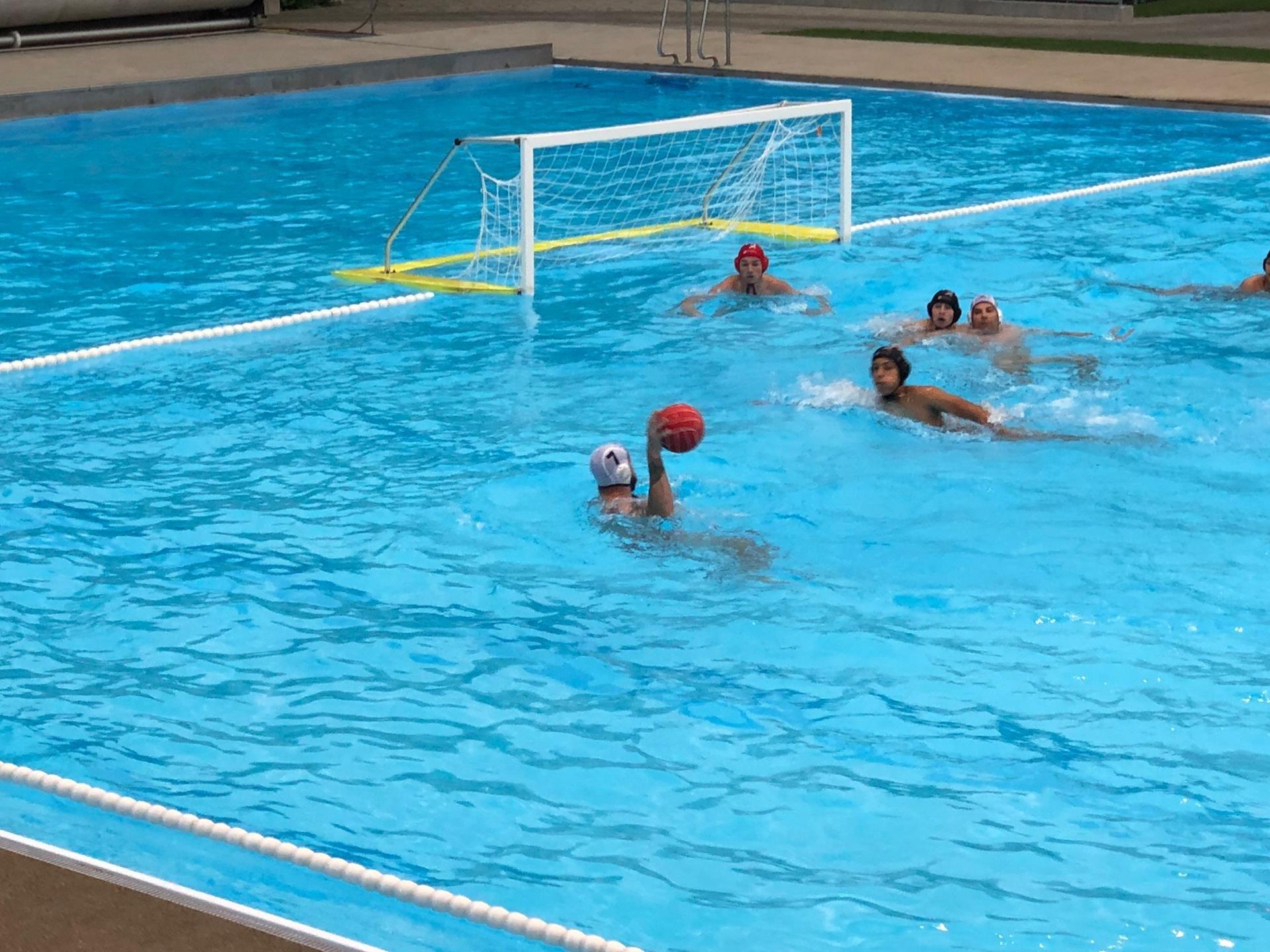 """""""Englische Woche"""" bei Frauenfelder Wasserballern"""